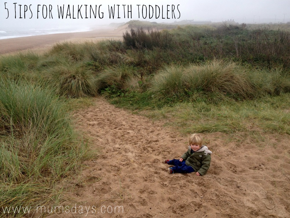 ...in the Dunes - 5 tips for walking with toddlers